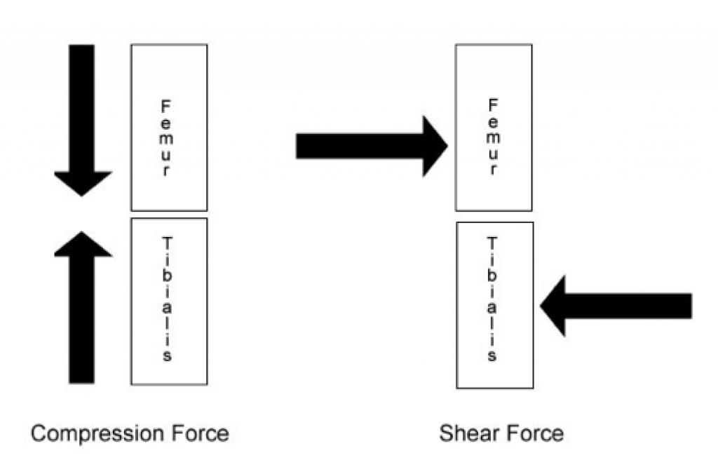 figure-1-squat